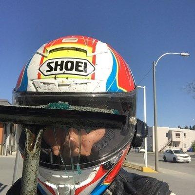 bugs, insects, shoei, helmet, motorcycle helmet, lex albrecht, squeegee
