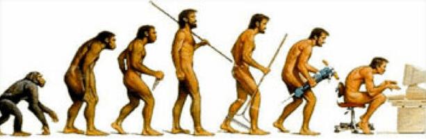 Évolution de la posture