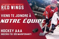 Hockey AAA Red Wings