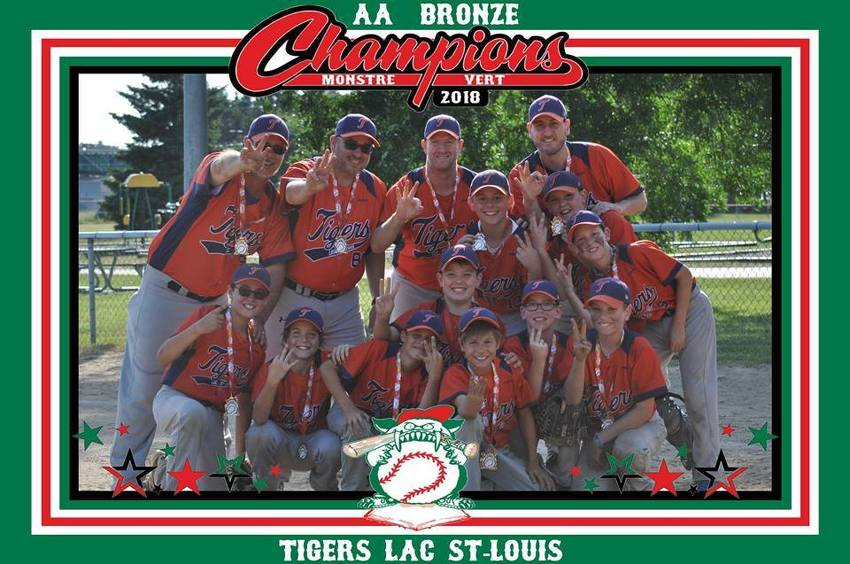 Tigers Orange du Lac St-Louis