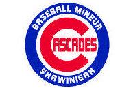 Bienvenue sur le nouveau site de l'Association de baseball de Shawinigan!