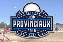 Alignement Championnat provincial Moustique