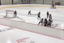 Programme Novice demi-glace : Les phases de la saison