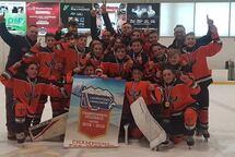 PeeWee AA Champions!