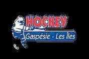 Hockey Gaspésie les Îles