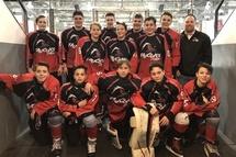 Tout va pour les Faucons cadet hockey