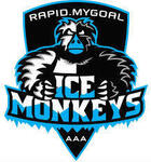 Ice Monkeys