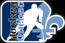 Offre d'emploi - Coordonnateur (trice) santé et sécurité, programmes de bourses et parahockey