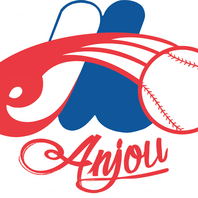 Association du baseball mineur Anjou inc.