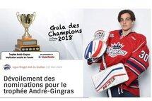 Francesco Lapenna une des quatre joueurs en nominations pour le trophée André-Gingras