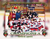 Hawks de La Prairie