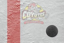 Bienvenue sur le nouveau site de l'association de hockey mineur de Louiseville!