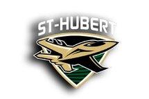 BIenvenue sur le nouveau site des Jets de St-Hubert!