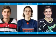 [Hockey coll. masculin div.1] Les étoiles de la semaine 23 dévoilées !