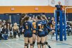 Actions 2016/2017 - AL Volleyball