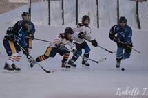 Bienvenue sur le nouveau site Web de l'Association de hockey mineur St-Ambroise/Falardeau!