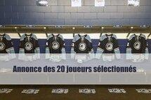 Hockey Québec annonce ses 20 joueurs sélectionnés pour les Jeux du Canada 2019