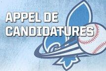 Appel de candidatures pour les postes d'entraîneur-chef et entraîneurs adjoints de l'Équipe du Québec Bantam masculin