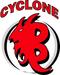 CYCLONE BLIZZARD