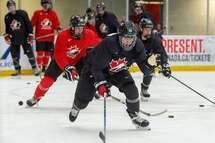 Plusieurs Québécois invités au camp de sélection de l'équipe nationale masculine estivale des moins de 18ans du Canada