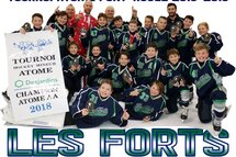 LES FORTS DE CHAMBLY ATOME AA GRAND GAGNANTS