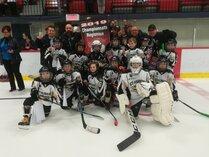 Jets de St-Hubert Novice B