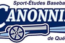 Rencontre d'informations Sport-études Baseball