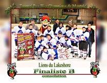 Lions du Lakeshore