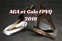 Les 14 récipiendaires des Méritas FPVQ 2018, ainsi que les deux intronisés au Temple de la renommée de la FPVQ seront connus samedi soir, lors du Gala annuel de la FPVQ.