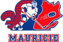 Hockey Mauricie dévoile son alignement pour les Jeux du Québec volet masculin !