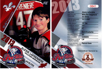 Cartes de hockey contrefaites