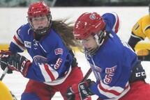 Nominations au bureau régional de Hockey Lac St-Louis
