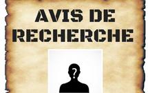 ENTRAÎNEUR-ADJOINT RECHERCHÉ AU M15 AAA MAJEUR