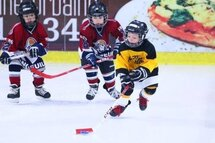 Programme pilote novice 2018-2019 de Hockey Canada