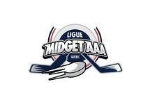 La Ligue midget AAA honore 15 élèves-athlètes