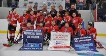 Championnats Régionaux 2015 - Lions Novice C3