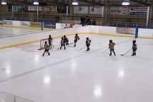 On se prépare pour le programme Novice demi-glace: objectifs et phases de saison