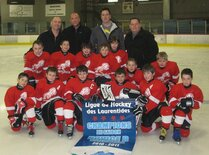 Ligue de Hockey des Laurentides (saison) - Lions N