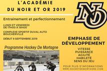 L'académie du Noir et Or verra le jour en 2019-2020