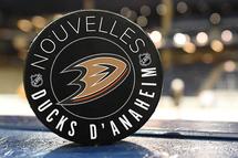 Les Ducks règlent le dossier Jacob Larsson