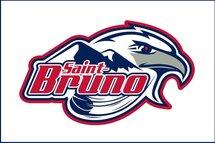 Bienvenue sur le site du Hockey mineur de Saint-Bruno