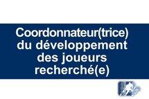 Offre d'emploi: Coordonnateur(trice) développement des joueurs - hockey masculin