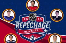 5 anciens Harfangs sur la liste finale de la centrale de recrutement de la Ligue Nationale de Hockey (LNH)