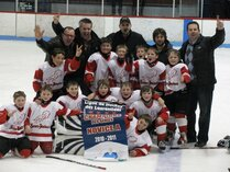 Ligue de Hockey des Laurentides (séries) - Lions N
