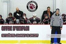 Offre d'emploi: entraîneur en hockey