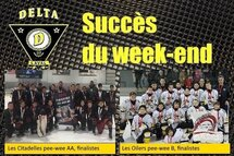 Week-end fructueux pour nos équipes Peewee