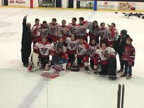 BANTAM AA CHAMPION BELOEIL