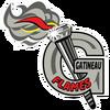 FLAMES de GATINEAU logo