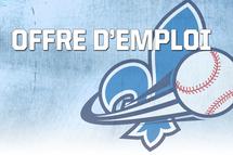 Entraîneurs pour les équipes du Québec féminines recherchés