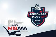 14 des 20 premiers choix en provenance de la Ligue de développement du hockey M18 AAA du Québec !